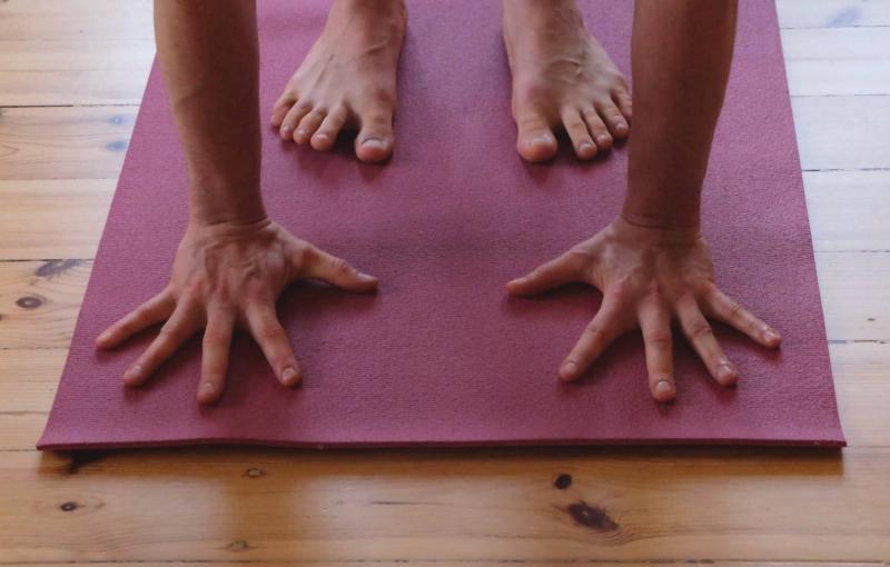 Zajęcia jogi on line