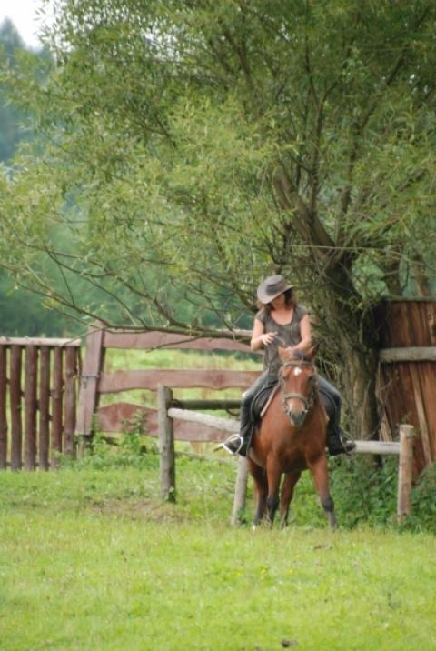 Wyjazd w Bieszczady - Joga i Konie