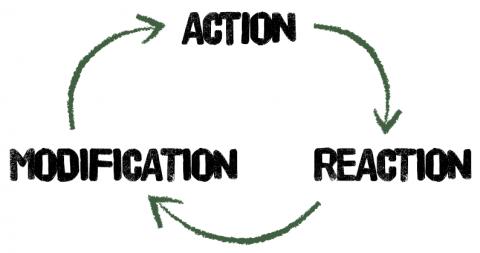 Akcja, reakcja, modyfikacja