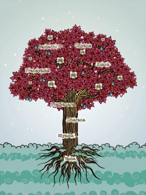 Drzewo Jogi