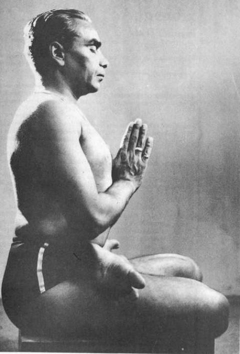 Guruji - B.K.S. Iyengar